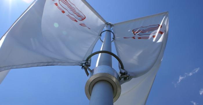 Triflag